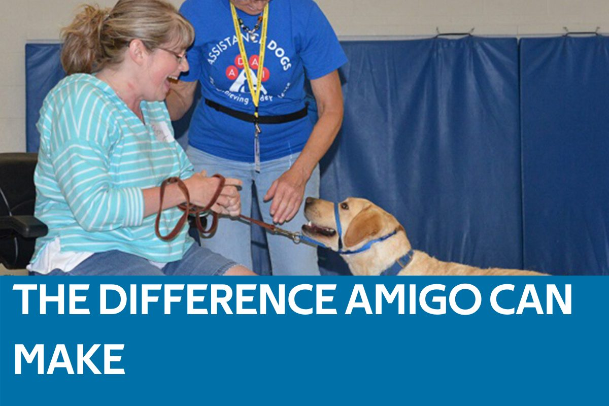 Amigo Difference Featured Image