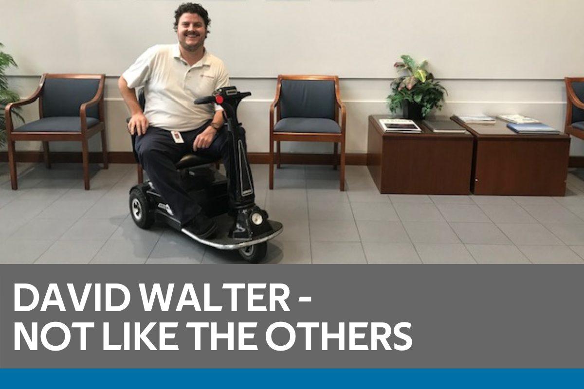 david-walter-featured-image